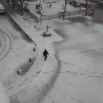 10a: Un nen descobreix com deixa el rastre per allà on passa (17.25)
